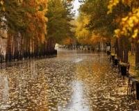 Осенняя набережная в Павлодаре