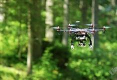 На заседании экосовета лесничих предложили заменить на беспилотники