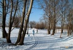 Праздничный забег в Новый год хотят провести в Павлодаре