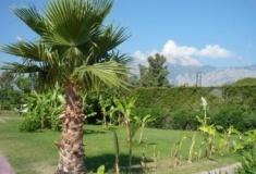Чем славится курорт Чамьюва в Кемере?