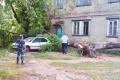 В Павлодаре во время бури на девушку упало дерево