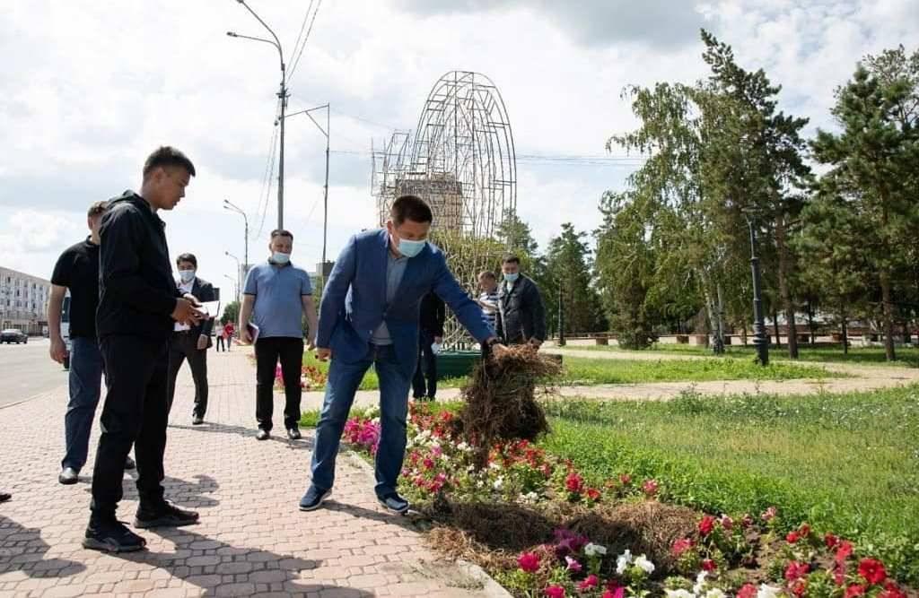 Качество работы подрядчиков по озеленению пересмотрят в Павлодаре