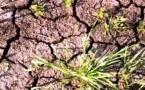 Земля и вода. Черноярские страсти