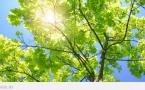 В регионах Казахстана ожидается 35-градусная жара