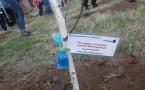 100 берез в честь юбилея Независимости высадили в Аксу