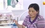 Павлодарские медики, требовавшие деньги за роды с семьи оралманов, действовали по закону
