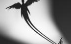 Перспективные проекты экономики павлодарской области будут спонсировать «Бизнес-ангелы»