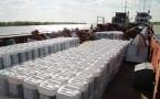 Около 19 тонн биопрепарата вылили в Иртыш для борьбы с мошкой