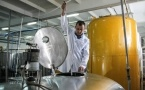 Молочный заводик из Мичурино снабжает продукцией Алтайский край