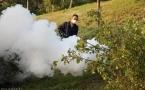 В Павлодарской области объявили конкурс на работы по борьбе с гнусом