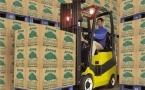 Модернизация производства лапши привела к сокращению рабочих мест