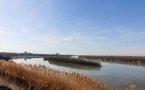 Аким Павлодарской области планирует благоустроить остров на Иртыше