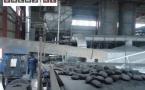 В Павлодарской области будут производить уголь из пыли