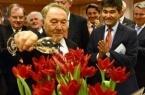 В Экибастузе будут выращивать голландские тюльпаны…