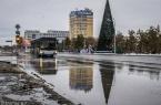 Главную новогоднюю елку Павлодарской области зажгу…
