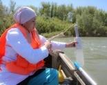 Загрязнение Иртыша не достигает даже сотых долей ПДК для питьевой воды