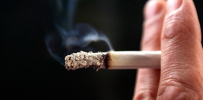 можно ли курить заплесневелый табак