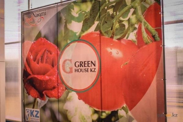 Экибастузские помидоры по 605 тенге можно найти в 45 торговых точках Павлодара