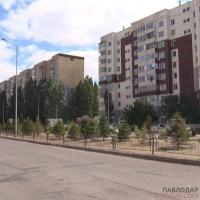 Высаженные жителями Усолки ясени и клёны спилили во время стрижки газона