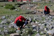 Археологи просят огородить места раскопок в Баянауле
