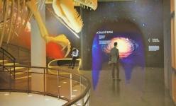 Гигантский «Казахстанозавр» будет жить в Павлодаре