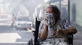 Власти Бразилии направили 200 тысяч солдат на борьбу с вирусом Зика
