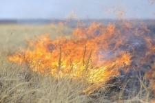 « Возгорание сухостоя перекинулось на дачи в Павлодаре, пострадало 18 дачных строений »