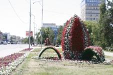 Павлодар украсили огромные лилии