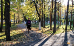 Аким Павлодарской области поручил привести в порядок парки Павлодара
