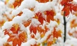 В регионах Казахстана ожидается похолодание и снег