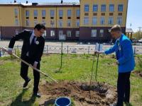 Элитные сорта яблонь посадили выпускники в школы-интерната № 1 у своего учебного заведения