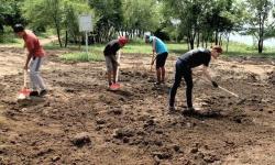В Павлодаре началось благоустройство Гусиного перелета