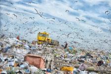 Эксперимент: жизнь без пластика в Павлодаре