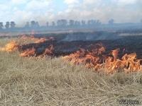 В Павлодарской области проведены совместные с РФ учения по тушению трансграничных природных пожаров