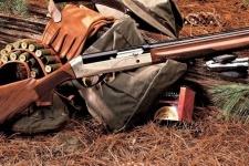 В Павлодарской области не будет весенней охоты на уток