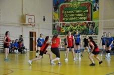 В Павлодаре прошли областные соревнования по волейболу
