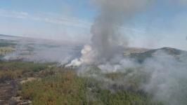 Сумма ущерба от лесного пожара в горах Баянаула превысила 95 миллионов тенге