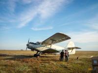 Площадь авиаобработки для борьбы с гнусом в Павлодарской области увеличили до 20 тысяч га