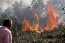 Павлодарский поджигатель заявил, что любит смотреть на огонь