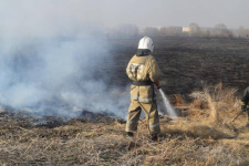 Пожарные в Павлодарской области продолжают бороться с возгораниями в пойме Иртыша