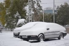Снег будет идти в Павлодаре до выходных