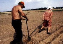 Уровень женской безработицы в Павлодаре ниже, чем в среднем по республике