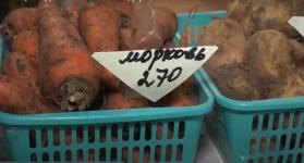 Овощи подешевели в Павлодарской области