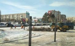 Около ТД «Артур» спилили 10 деревьев