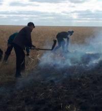 В Актогайском районе жители всем селом тушили степной пожар