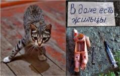 В Павлодаре возобновится плановый снос обветшавших домов на Алюминстрое