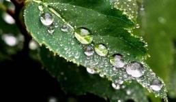На смену жаркой и сухой погоде в Казахстан придут дожди и похолодание