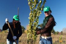 АО «Алюминий Казахстана» сделал очередной, зеленый подарок городу