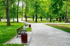 Учиться развивать парковую зону павлодарцы будут у московских коллег