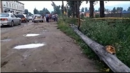 В Алматы дерево упало на машину, есть пострадавшие